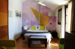 Habitación 401 Hotel Mas Passamaner