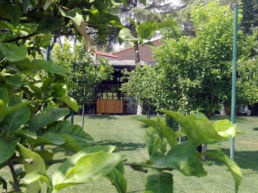 Jardines Hotel Monument Spa Mas Passamaner