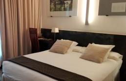 Habitación 307 Hotel Mas Passamaner