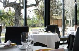 Restaurante La Gigantea 04