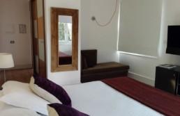 Habitación 202 Hotel Spa Mas Passamaner