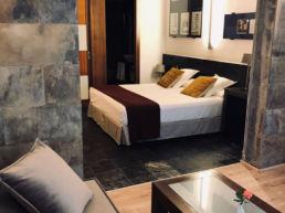 Habitación 305 Hotel Mas Passamaner